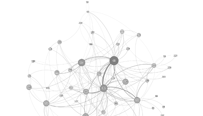 Figure: A Social Network Graph of One Online Community